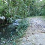 Blackbutt creek next to servicetrail (55100)