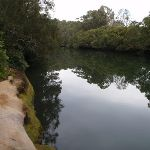 Rocky edge to Lane Cove river (55925)
