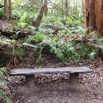 Bench along walk (56219)