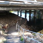 Footpath under Epping road Bridge and Lane Cove river (56468)