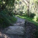 Track around to Sandy Bay (56873)