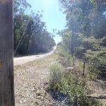 Cherry lane (58460)