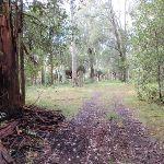 nearing the Berraba campsite (61379)