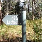 125r lookout track intersection (61643)