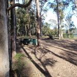 Hunter Lookout Picnic Area (62126)