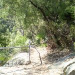 fenced off rock shelf (6217)