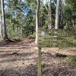 Signpost near Macleans Lookout on the Great North Walk (62204)