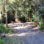 rocky creek camping area (62543)