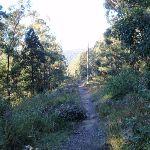 winding down the ridge (63116)