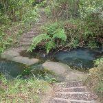 creek crossing (63836)