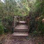A bridge (64031)