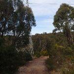 service trail winding under powerlines (64070)