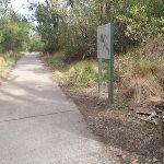 Great North Walk near Kissing point Rd (64091)