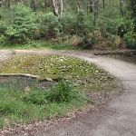Browns Water hole causeway (64118)