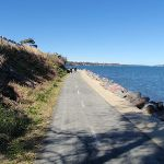 Path around Lake Macquarie (66168)