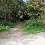 Greta Road track entrance (66549)