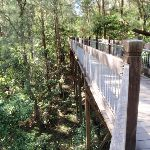 high boardwalk (66669)