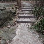 Steps east of Fairylands (67272)