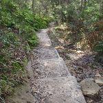 Steps west of Fairyland (67458)