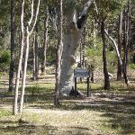 Tunks Ridge Reserve (6868)