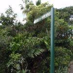 Sign along track (69682)