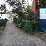 Track near Taronga Wharf (69880)