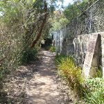 Track behind Taronga Zoo (69952)