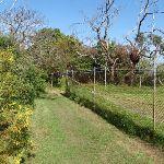 Track around fence (70021)