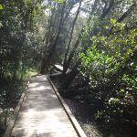 crosslands boardwalk (71335)