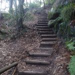 steps up out of valley (71542)