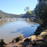 path winding around Berowra creek (72316)