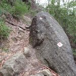 Marker on rock along track (73230)