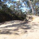 The Oaks Fire Trail (74493)
