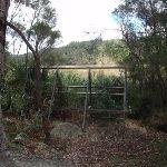 the birdwatchers observatory frame (76813)