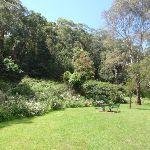boomerang reserve (77050)