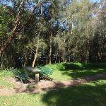 Salt Pan Creek picnic area (77365)