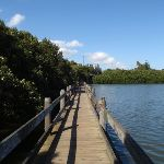 Salt Pan Creek boardwalks (77482)