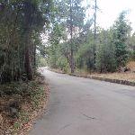 The Sphinx Memorial driveway (78388)