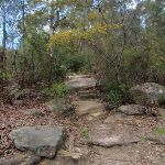 Rocky steps to Pennant Hills (79603)