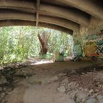 Graffiti under bridge (80191)