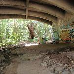 Graffiti under bridge (80191)