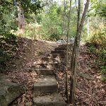 Steps near Pembroke St (80224)
