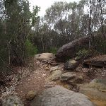 Grotto Point Track (82597)