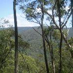 Jenolan Karst Reserve (8387)