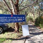 Bottom of the merrits nature track (84763)