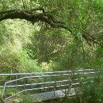 Crossing the Jenolan River (8843)