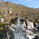 Suspension Bridge over the Snowy River (88777)