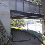 Under the Burns Bay road bridge (89835)