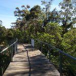 following the wooden footbridge (91573)