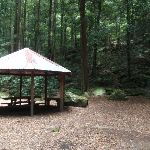 Leura Forest Gazebo (93184)